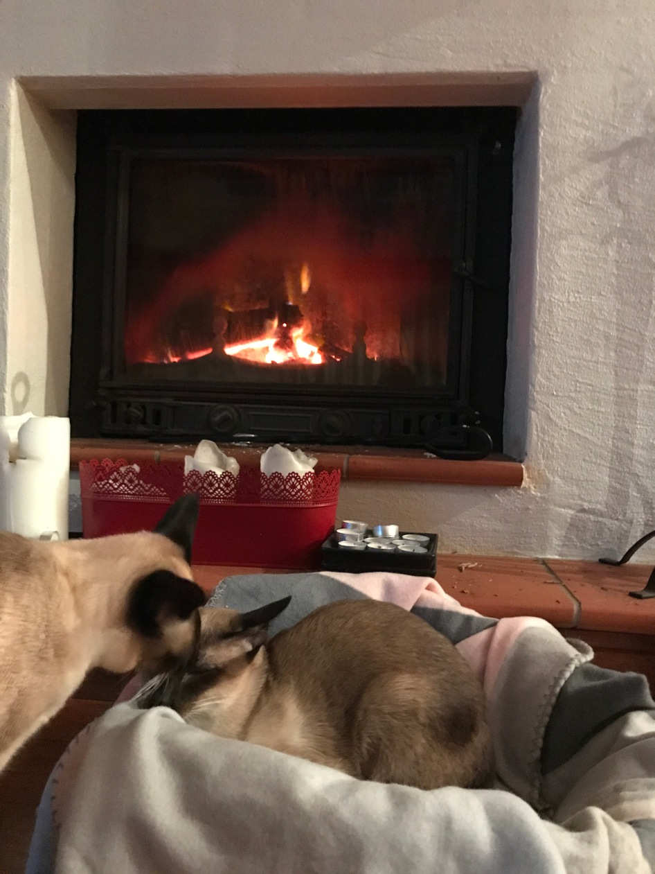 Bronte asks to join Jasper by the fire